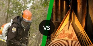 Leaf blower vs rake - which one is better?