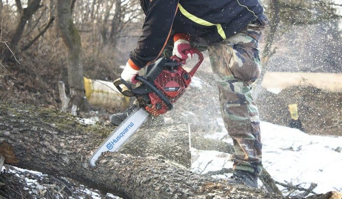 A forester cutting up a fallen tree with his chainsaw.