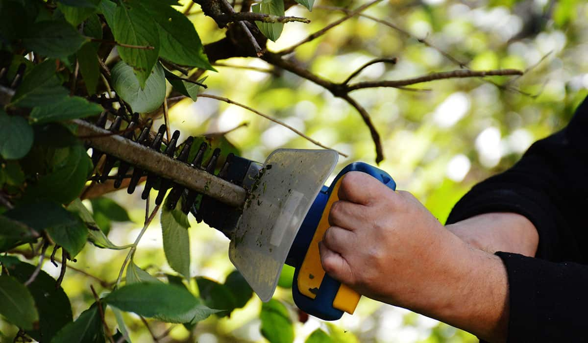 Troubleshooting Common Malfunctions in Hedge Trimmers