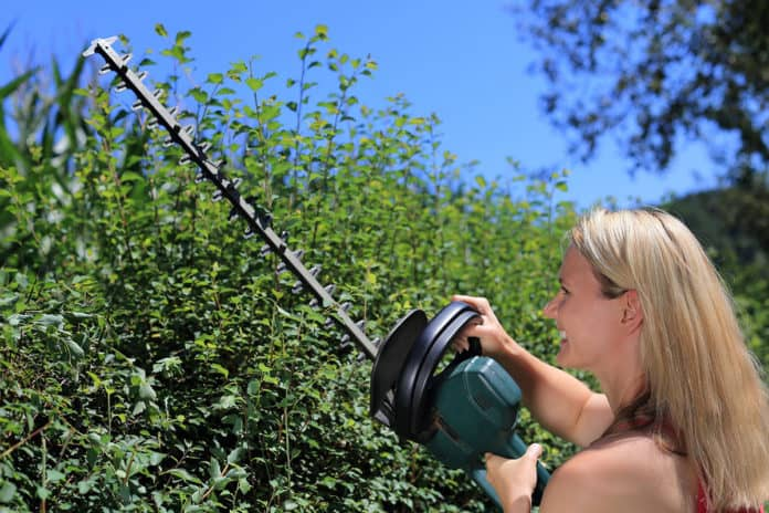 A woman trimming bushes with a cordless hedge trimmer.