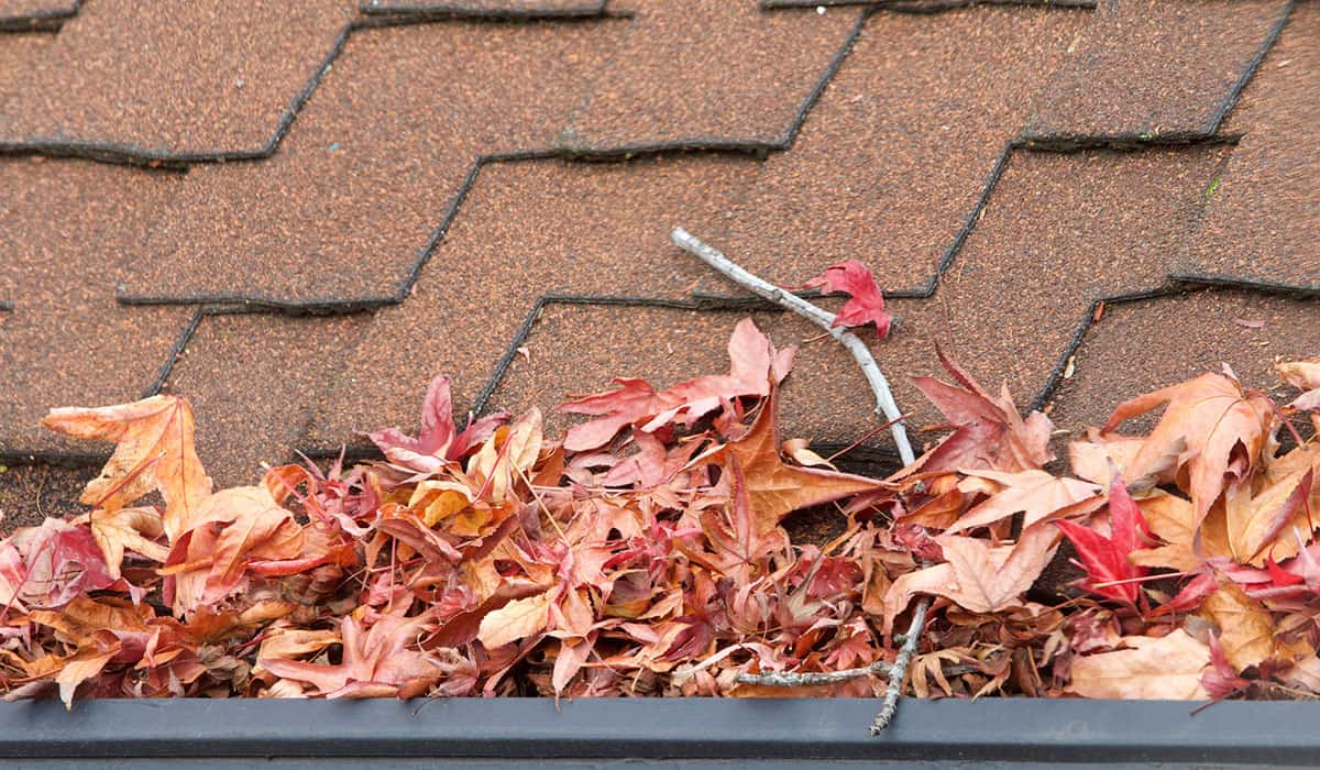 How to Clean Gutters From the Ground – 5 Tools to Choose From