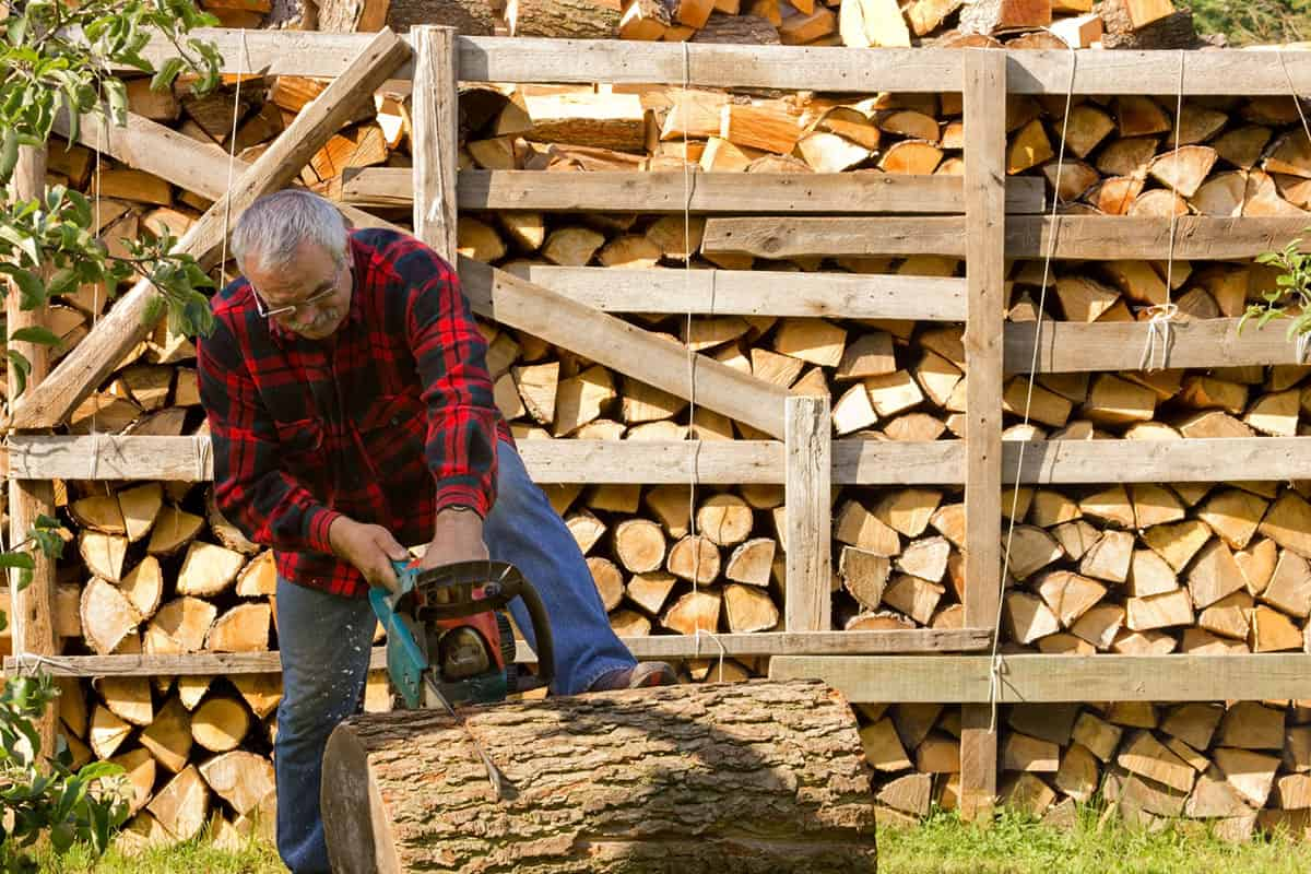 The Best Chainsaws for Senior Citizens – Buyer's Guide