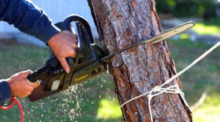 Do Electric Chainsaws Need Oil?