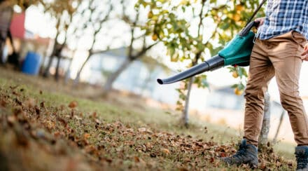 The 7 Best Leaf Blowers On A Budget